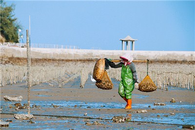 【周邊跟團】小嶝島漁民趕海體驗一日游【4-12人VIP慢游團】4人起訂