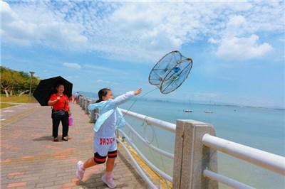 厦门环岛路赶海+帆船体验一日游|网红亲子+海鲜餐+抓鱼虾螃蟹