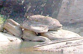 上下水龟旅游简介