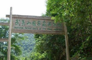 武夷山森林公园