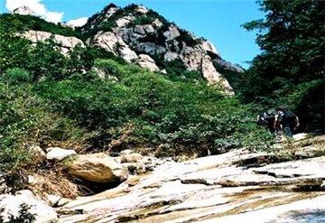 紫云山自然保护区