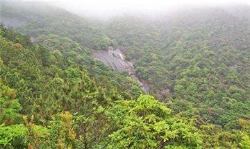 梁野山自然保护区