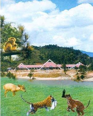 梅花山自然保护区