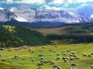 新疆天山天池1日游