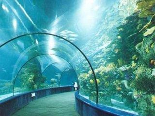 海洋公园旅游简介