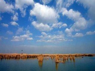 宁夏沙湖+贺兰山岩画+西部影视城1日游
