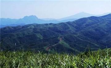 鹦歌岭旅游区