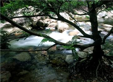 木色旅游度假风景区