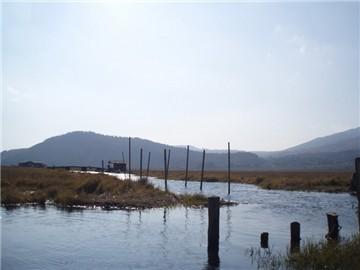 北海湿地旅游简介