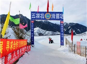 五棵松滑雪场旅游简介