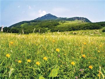 百花山自然风景区