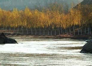 晋陕大峡谷