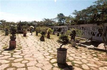 玫瑰园和盆景园