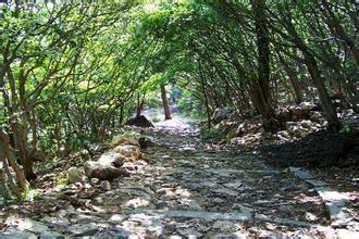 大孤山国家森林公园