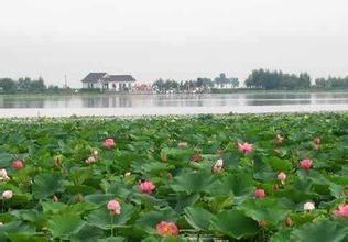 黑山莲花湖