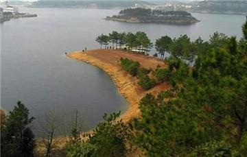 仙人岛森林公园