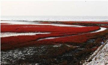 红海旅游区