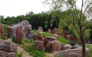 舒兰市森林公园
