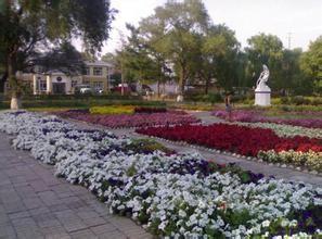 讷河市雨亭公园