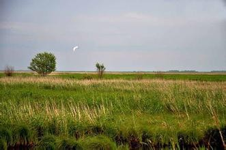 虎口湿地自然保护区