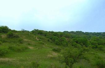 乌呼穆勒景区