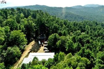 丰林自然保护区