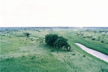 洪河自然保護區