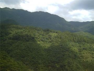 勃利毛公山