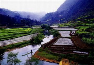 嫩江高峰森林公园